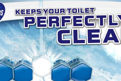 Domestos Toilet Blocks