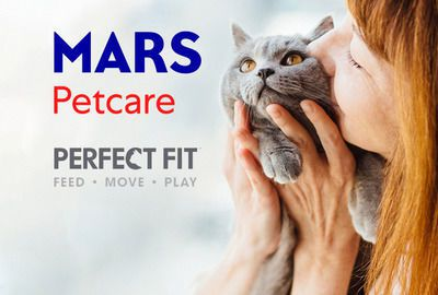 Perfect Fit Cat Health Product Innovation