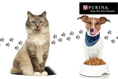 Purina - Pleasure in Food