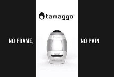 Tamaggo - No Frame, No Pain
